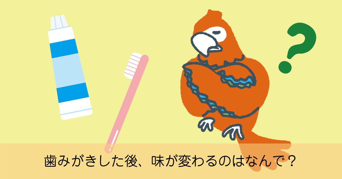 界面活性剤入りの歯磨き粉で歯を磨くと味が変わってしまう理由とは?歯みがきした後、味が変わるのはなんで?