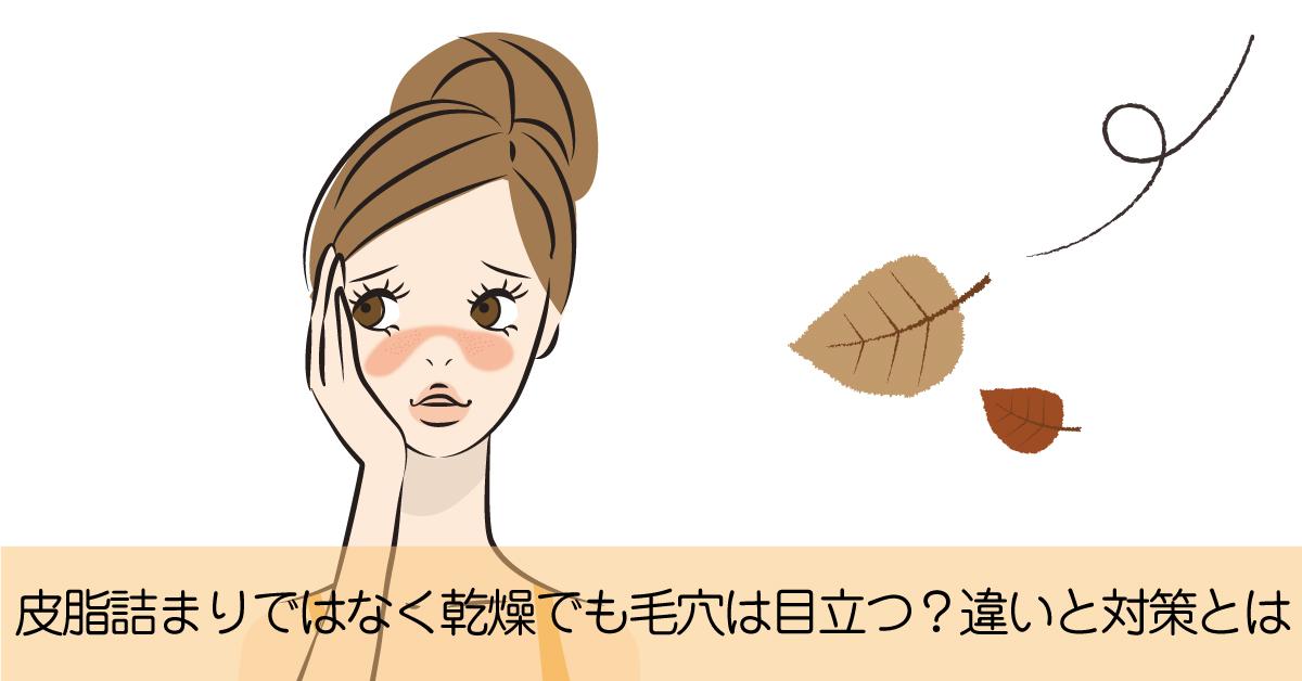 乾燥による毛穴の目立ちと皮脂の黒ずみの違いと対策とは?