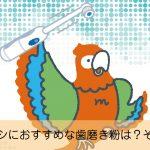 電動歯ブラシにおすすめなモンモリロナイトクレイ。その理由とは?