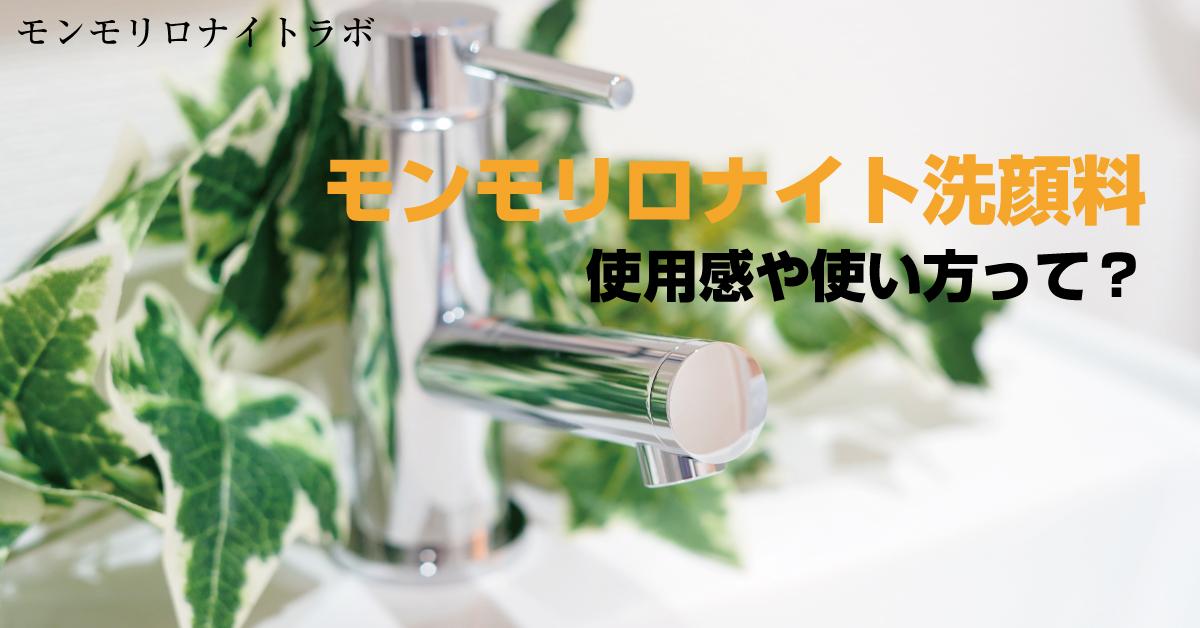 モンモリロナイトを使った洗顔のメイクも落とす使い方とは?