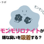 【実験】モンモリロナイト歯磨き粉は口臭を吸着する?